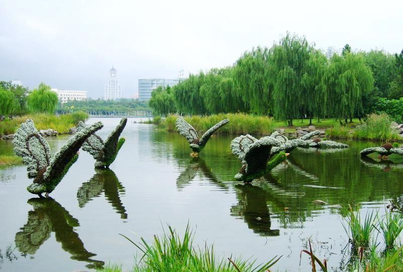 китайский парк тверь фото смотреть огромным желанием принимали
